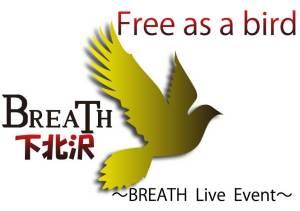 Free-as-a-bird01